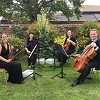 Ariella Strings - Quartet, Trio & Duo