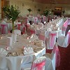 Pink Lemon Chair Covers & Accessories
