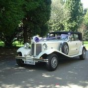 Elegant Lady Wedding And Anniversary Cars