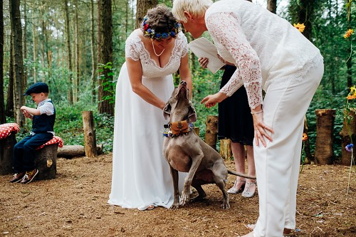 Weddings at Camp Katur